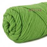 #029 : สีเขียวใบเตย