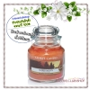 Yankee Candle / Small Jar Candle 3.7 oz. (Amber Moon)