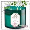 Bath & Body Works Slatkin & Co / Candle 14.5 oz. (Crisp Morning Air)