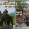 VCD สารคดี ช้างไทย ตอนช้างกับการท่องเที่ยว