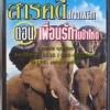 VCD สารคดีช้างอาฟริกา ตอนเพื่อนรักในป่าโหด