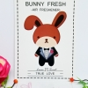 Bunny Fresh / Air Freshener (True Love-น้ำหอม Moshino)