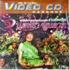 VCD จินตหรา พูนลาภ บันทึกภาพการแสดงสดคอนเสิร์ตสาวเสียงพิณ ชุดที่1