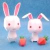 กระต่ายคู่