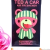 Ted A Car / Air Freshener (Watermelon)
