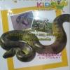 VCD สารคดี เรียรู้ชีวิตสัตว์โลก สำหรับเด็ก อนาคอนดา (เรียนรู้ 2ภาษา ไทย-อังกฤษ)