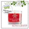 Bath & Body Works Slatkin & Co / Mini Candle 1.3 oz. (Frosted Cranberry)