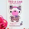Ted A Car / Air Freshener (Blossom)