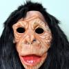 ตระกูลลิง 02