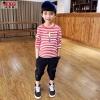 เสื้อยืดเด็กผู้ชาย ช้อปเสื้อผ้าเด็กผู้ชายออนไลน์ เสื้อผ้าเด็กโต ตั้งแต่ 3 ขวบ-12 ปี