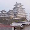 รายงานสดจาก Himeji ซากุระบานกันแล้วประมาณ 70%