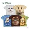 เสื้อ shirt 3D
