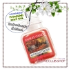 Yankee Candle / Car Jar Ultimate (Autumn in the Park)