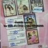 DVD หนังอีโรติค 5in1 vol.4