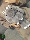 (new)สินค้าขายดี⭐⭐⭐ พร้อมส่ง กระเป๋ากระต่ายขนนุ่ม งานนำเข้าพรีเมี่ยม ขนาดกำลังดี งานน่ารักมากจ้า ข้างในมีช่องเล็กใส่ของจุกจิก สายสะพายยาว (**ปล.สินค้าจริงในรูปรวมสี สีอาจผิดเพี้ยนบ้างเล็กน้อย
