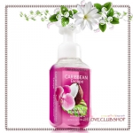 Bath & Body Works / Gentle Foaming Hand Soap 259 ml. (Caribbean Escape)