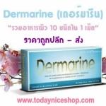 เดอร์มารีน Dermarrine ผลิตภัณฑ์ เสริมอาหาร สกัดจากถั่วเหลือง ไฟโตสเตอรอล และกระดูกอ่อนปลาฉลาม