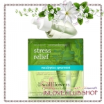 Bath & Body Works / Wallflowers 2-Pack Refills 48 ml. (Stress Relief - Eucalyptus Spearmint)