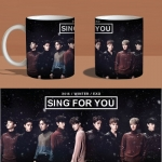 Preorder แก้ว EXO exo sing for you B MKB593