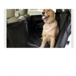 ของใช้สุนัขบนรถยนต์