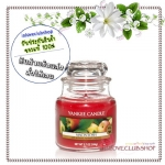 Yankee Candle / Small Jar Candle 3.7 oz. (MacIntosh) *ขายดี