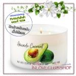 Bath & Body Works Slatkin & Co / Candle 14.5 oz. (Avocado Coconut) *