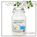 Yankee Candle / Large Jar Candle 22 oz. (Loves Me, Loves Me Not)