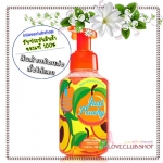 Bath & Body Works / Gentle Foaming Hand Soap 259 ml. (Just Peachy)