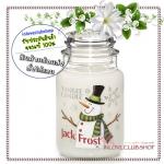 Yankee Candle / Large Jar Candle 22 oz. (Jack Frost)