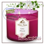 Bath & Body Works Slatkin & Co / Candle 14.5 oz. (Cactus Blossom) *