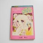 นักรักโลกมายา เล่ม 22 / ซุสุเอะ มิอุจิ