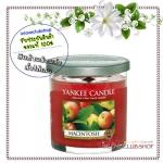 Yankee Candle / Small Tumbler Candle (single wick) 7 oz. (Macintosh)