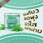 Chloro Mint คลอโรมิ้นต์ คลอโรฟิลด์