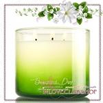 Bath & Body Works Slatkin & Co / Candle 14.5 oz. (Beautiful Day)