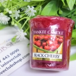 Yankee Candle / Samplers Votives 1.75 oz. (Black Cherry)