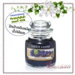 Yankee Candle / Small Jar Candle 3.7 oz. (Berrylicious)