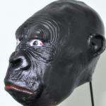 ตระกูลลิง 01