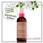 Bath & Body Works / Fine Fragrance Mist 176 ml. (Mint Leaf & Bergamot) *Limited Edition #NEW