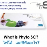 Phyto SC stem cell บำบัดร่างกายคืนสู่วัยหนุ่มสาว ไฟโตเอสซี ราคาถูก ลด 40 - 60 %