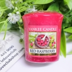 Yankee Candle / Samplers Votives 1.75 oz. (Red Raspberry)