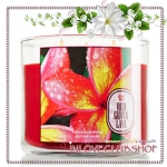 Bath & Body Works Slatkin & Co / Candle 14.5 oz. (Red Guava Lava) *Limited Edition