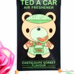 Ted A Car / Air Freshener (Cantaloupe Sorbet)