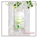 Yankee Candle / Scent-Light Refill (Vanilla Lime)