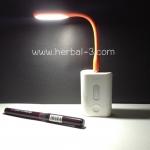 โคมไฟแบบพกพา LED Portable Lamp