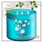 Bath & Body Works Slatkin & Co / Candle 14.5 oz. (Eucalyptus Rain)