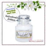 Yankee Candle / Small Jar Candle 3.7 oz. (Winter Garden)