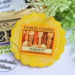 Yankee Candle / Tarts Wax Melts 22 g. (Harvest)