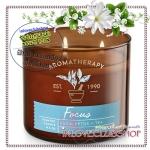 Bath & Body Works Slatkin & Co / Candle 14.5 oz. (Focus - Eucalyptus Tea) #NEW