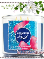 Bath & Body Works Slatkin & Co / Candle 14.5 oz. (Moonlight Path)