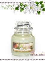Yankee Candle / Small Jar Candle 3.7 oz. (Summer Wish)